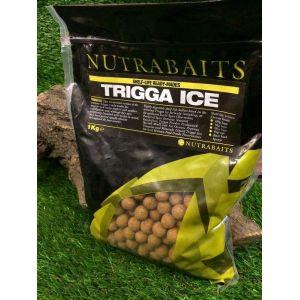 Nutrabaits Trigga ICE bojli 1kg